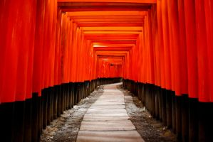 Fushimi Inari Shrine in Kyoto, Red Torii by andre2886