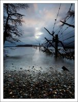 Lomond by DL-Photography