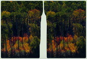 Dog Lake / Ontario 3D :: HDR by RAW :: Stereoscopy by zour