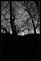 silhouettes by TheEpilogueOfLife