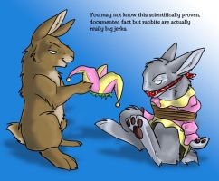 Rabbits are big jerks by crewwolf