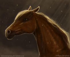 Horse by Mospineq