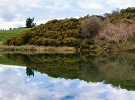 Water Mirrors Reality by ARC-Photographic