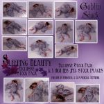 Sleeping Beauty Full Pack by GoblinStock
