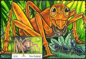 Giants of Aotearoa - Weta by lemurkat