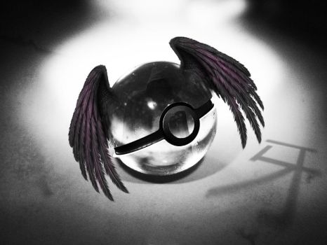 The Pokeball of Fang (Maximum Ride) by wazzy88