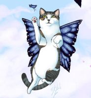 Fairy Kitty by Cola82
