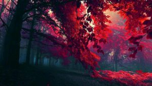 Forest..!! by therisenprincess