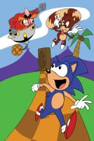 I HATE THAT HEDGEHOG!! by jimferno