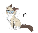 Grumpy Cat by IamtehPILOT
