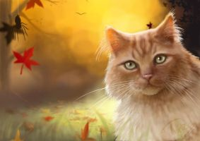Ginger the Autumn kitty by Trutze
