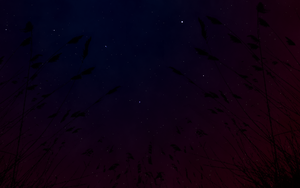 The big dipper by Theonlychad