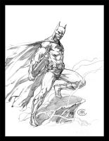 Dark Knight by caananwhite
