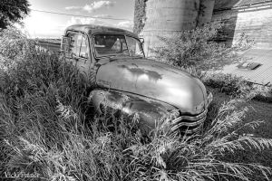 Chevy Truck Dead and Gone by VFrance