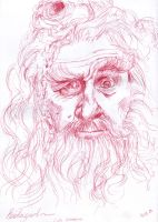 Radagast, the brown by Karolina5n