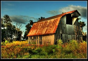 Old barn 2 by maldonadoga