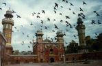 Pigeons And Wazir Khan Mosque by maybeU