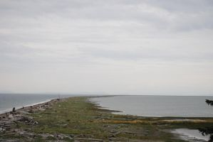 dungeness spit by Makachop128