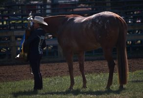 Showmanship 13 by erl-stock