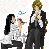 Harry Potter: Marry me? S+R by finni