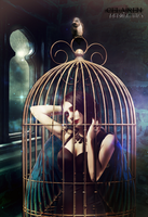 Caged by eerilyfair