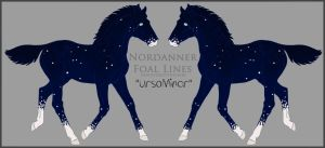A2479 UrsaMinor Foal Design Holder by HoT-Stables