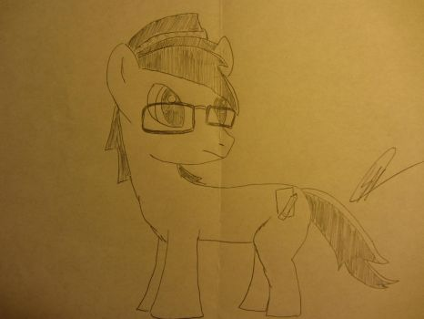 CrashJakFan1994 Pony OC with No Color by BlackBeltDragon95