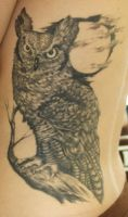 Great horned owl by PaintedPeople