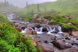 Waterfall, Mt. Rainier by gordo99