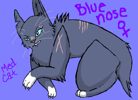 Bluenose Meddie Cat by Hurrama-saur