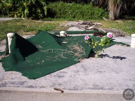 Putt Putt Today 1420 by rjsproductions