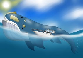 Did you know: Facts about Wailord by TipsyRa1d3n