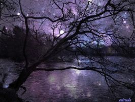 It Was A Magical Night By The River by Estruda