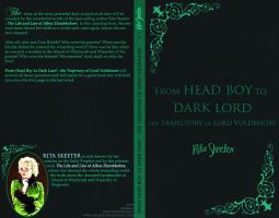 From Head Boy to Dark Lord by Arileli