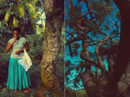 plum diptych by NSH