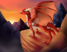 CM:: Sunrise by quila111
