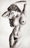 female nude study 5 by CpointSpoint