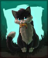 Meow Meow by OrcaOwl