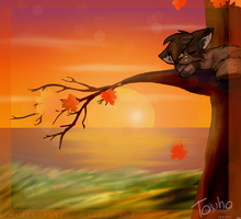 -CE- Autumn sunset by Kirjorastas