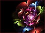 Rainbow Flower by The-Apparition