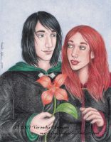 HP DH Spoiler: A Lily for you by Verlisaerys