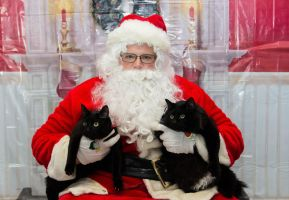 Salem and Nelson Santa Picture 2015 by DragonsFlameMagic