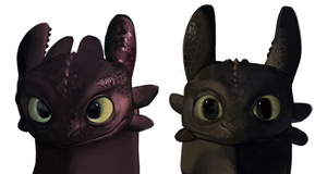 Toothless Studies by tuliplou