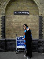 Getting to Platform 9 3.4 by Sofisofas
