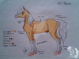 New Sol Reference by Leadmare