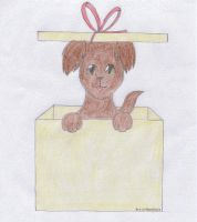 Puppy in a box by GhostLora