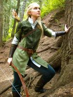 Legolas of the Woodland Realm by Tatsue