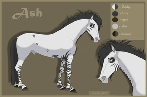 Ash |Reference sheet | by LadyX-LT