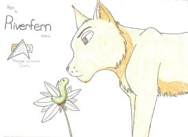 Kes is Riverfern by Dragon-of-DC