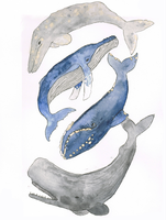 Four Whales by BrennendeBuecher